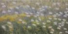 PolarkreisLicht Nr.5 2020 50 x 100 cm Öl auf Leinwand