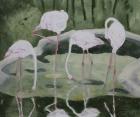 Rosa Flamingos 2011 50 x 60 cm Öl auf Leinwand