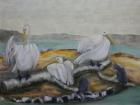 Pelikane und Kormorane 2011 60 x 80 cm Öl auf Leinwand