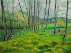 Frühling Mitterlassnitz 2011 60 x 80 cm Öl auf Leinwand