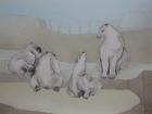 Eisbären Nr.1 2009 60 x 80 cm Öl auf Leinwand
