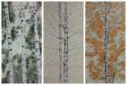 Birken, Triptychon 2013 3x (80 x 40 cm) Öl auf Leinwand