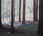 Waldhang 2008 50 x 60 cm Öl auf Leinwand
