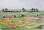 Landschaft um Apetlon 2004 36 x 51 cm Aquarell