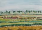 Landschaft am Neusiedler See 2004 36 x 51 cm Aquarell