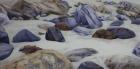 Küstenimprovisation Nr.3 2020 50 x 100 cm Öl auf Leinwand