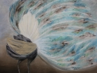 Balzender Pfau Nr.2 2017 60 x 80 cm Öl auf Leinwand